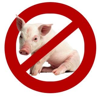 no pig
