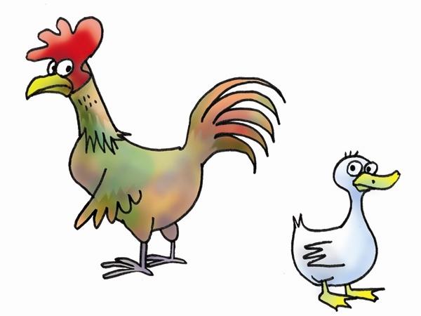 ayam_dan_bebek
